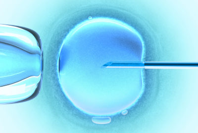 Vatican disapproves of Nobel Prize awarded to Robert Edwards for IVF research